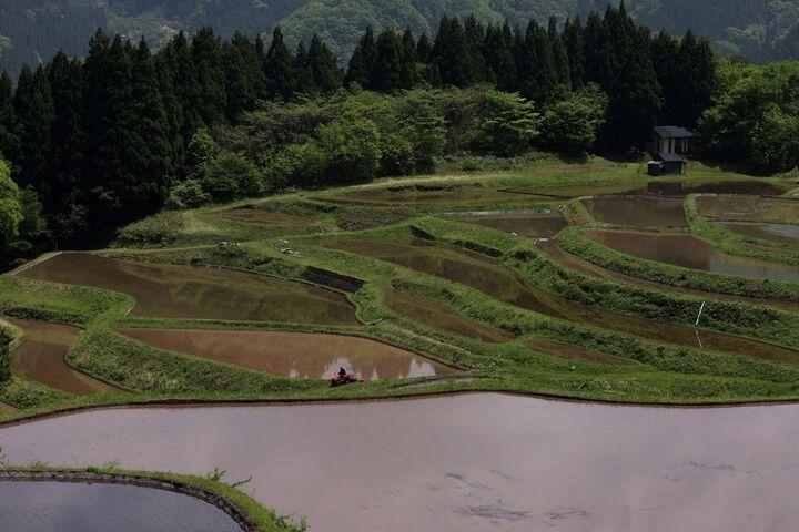 ژاپن 17