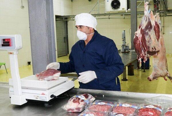 حذف گوشت قرمز و ماهی از سفرهها | سویا جایگزین گوشت شد