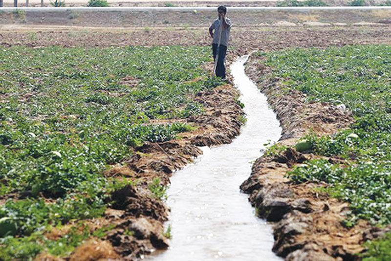 سالها بی آبی و ادامه وعده ها؛ روستاهای زرند با خشکسالی دست به گریبان شدند