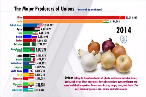 چین، بزرگترین تولید کننده پیاز در جهان