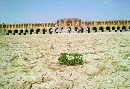 تغییر الگوی کشت چارهساز مشکل کشاورزان اصفهان نشد  کشت گلخانه ای بهترین راهکار است؟