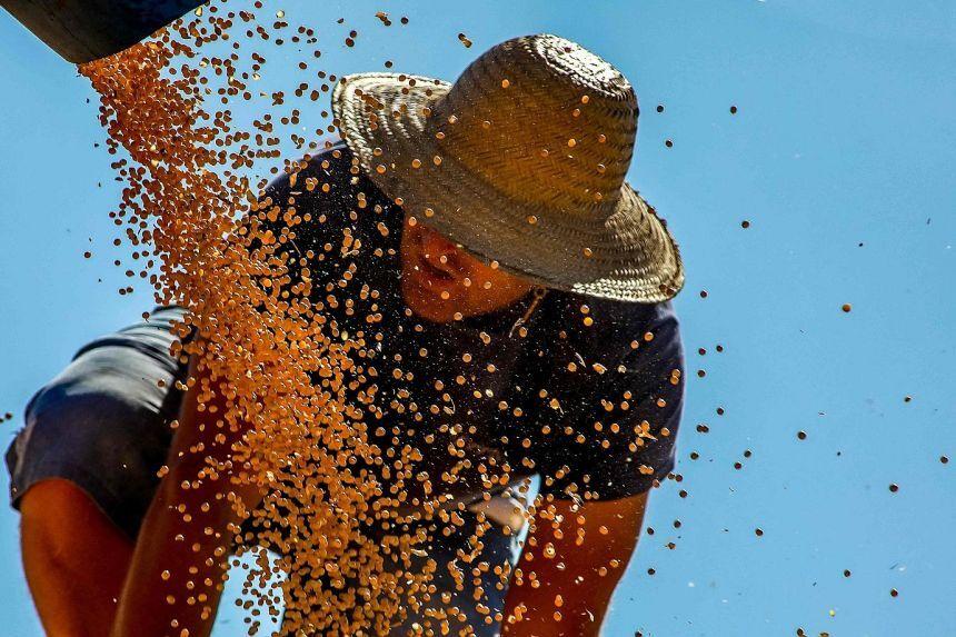 تورم ۴۰ درصدی دامن مواد غذایی را در دنیا گرفت