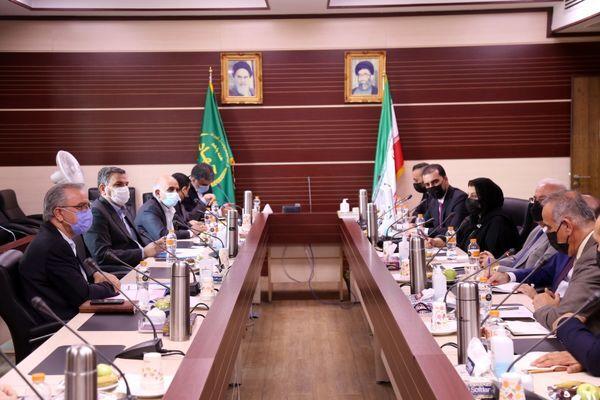 همکاری ایران و اقلیم کردستان عراق برای تبادل دانش دامپروری و صادرات محصولات دامی