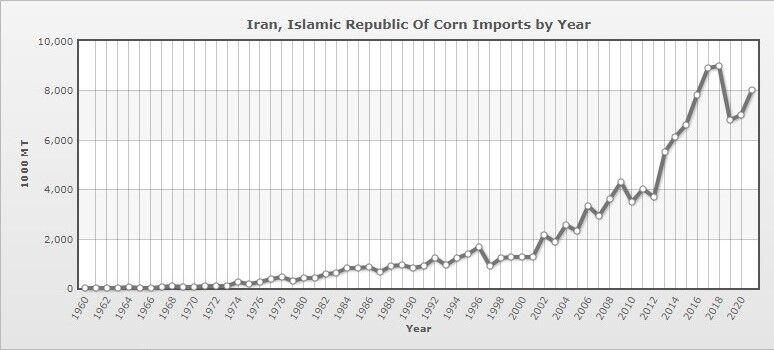 نام ایران در بین بزرگترین واردکنندگان جهانی ذرت| هر تن در بازارهای جهانی ۲۷۶ دلار