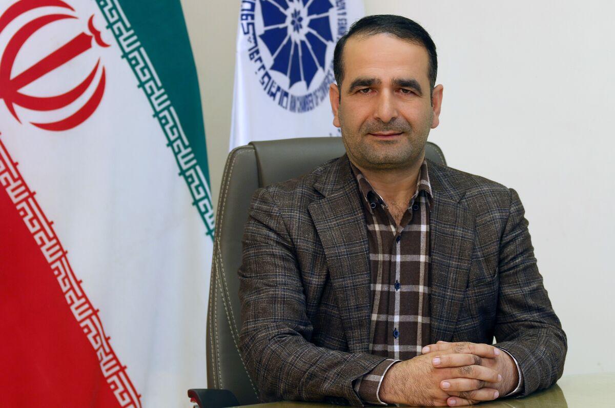 افت ۱۰۰ درصدی قیمت کیوی ایران در بازارهای خارج| خرابی ۵۰درصدی محصول