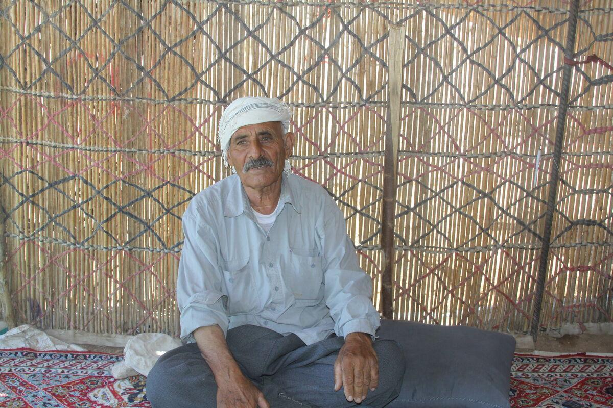 دام عشایر ایلام خریدار ندارد/ میزان توزیع آب کافی نیست