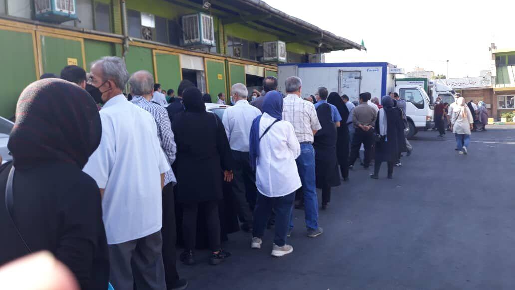 صف خرید مرغ هر روز طولانی تر از دیروز  فرار اتحادیه مرغ از پاسخگویی!   مرغ در بازار ۴۰ هزار تومان