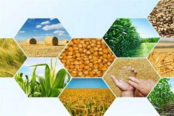 ۹۰ درصد تولیدات کشاورزی ایران آبی است/ سهم ۱۰ درصدی تجارت کشاورزی