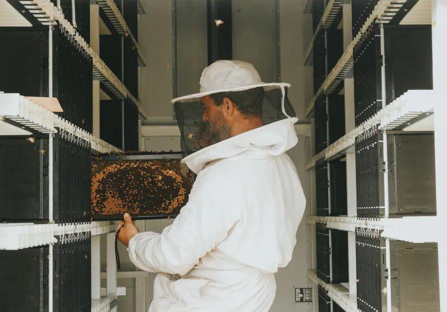 تولید کندوهای رباتیک برای پرورش زنبور عسل
