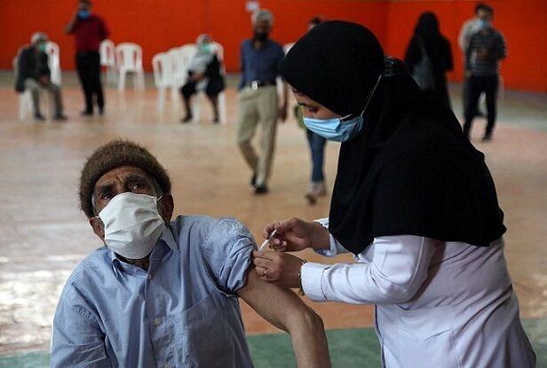 زوایای پیدا و پنهان واکسن ایرانی کرونا| مسیر جهانی شدن «برکت» دور از ذهن نیست