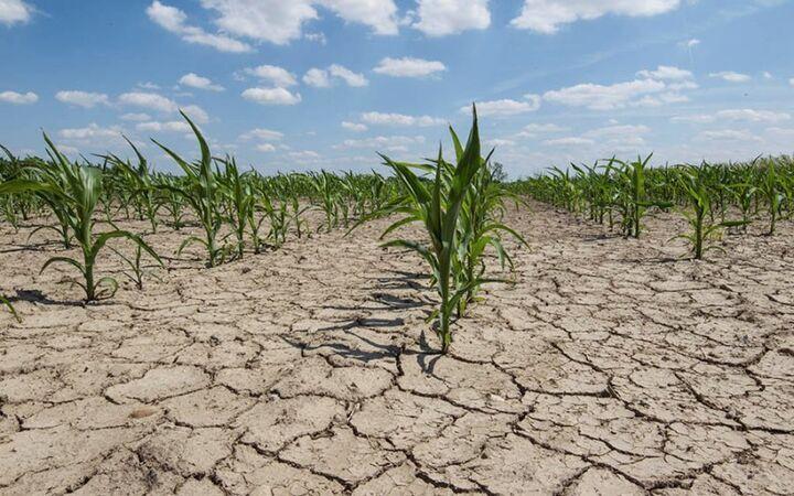 کمبود جدی آب در استان سمنان   سرمایه گذار بدون آب جذب نمیشود